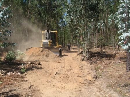 Abertura, Execução e Manutenção de Caminhos Florestais