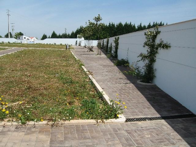 Cemitério da Batalha